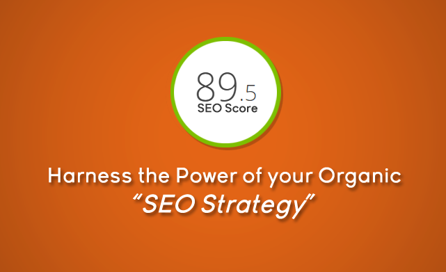 Harness the Power of Your Organic SEO Strateg